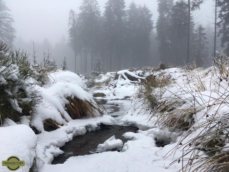 Winter landscape in Ardennes Belgium